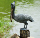 Pelican Garden Sculpture with Bluetooth Speaker
